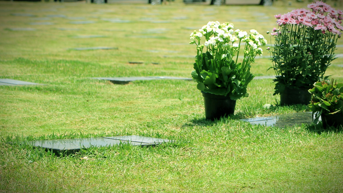 Memorial Parque da Paz | Um novo conceito de cemitério